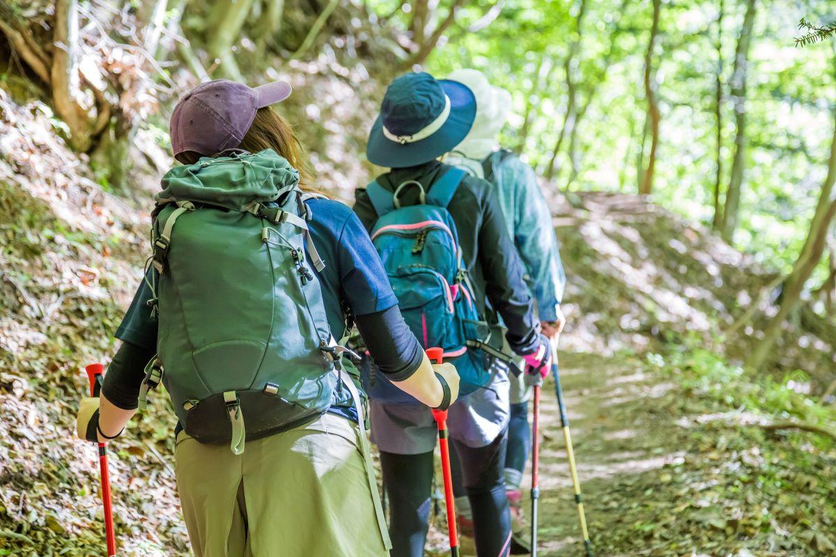 ハイキングをする女性達